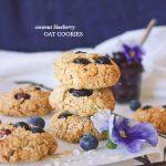 Coconut Blueberry Oat Cookies (GF + Nut-Free)